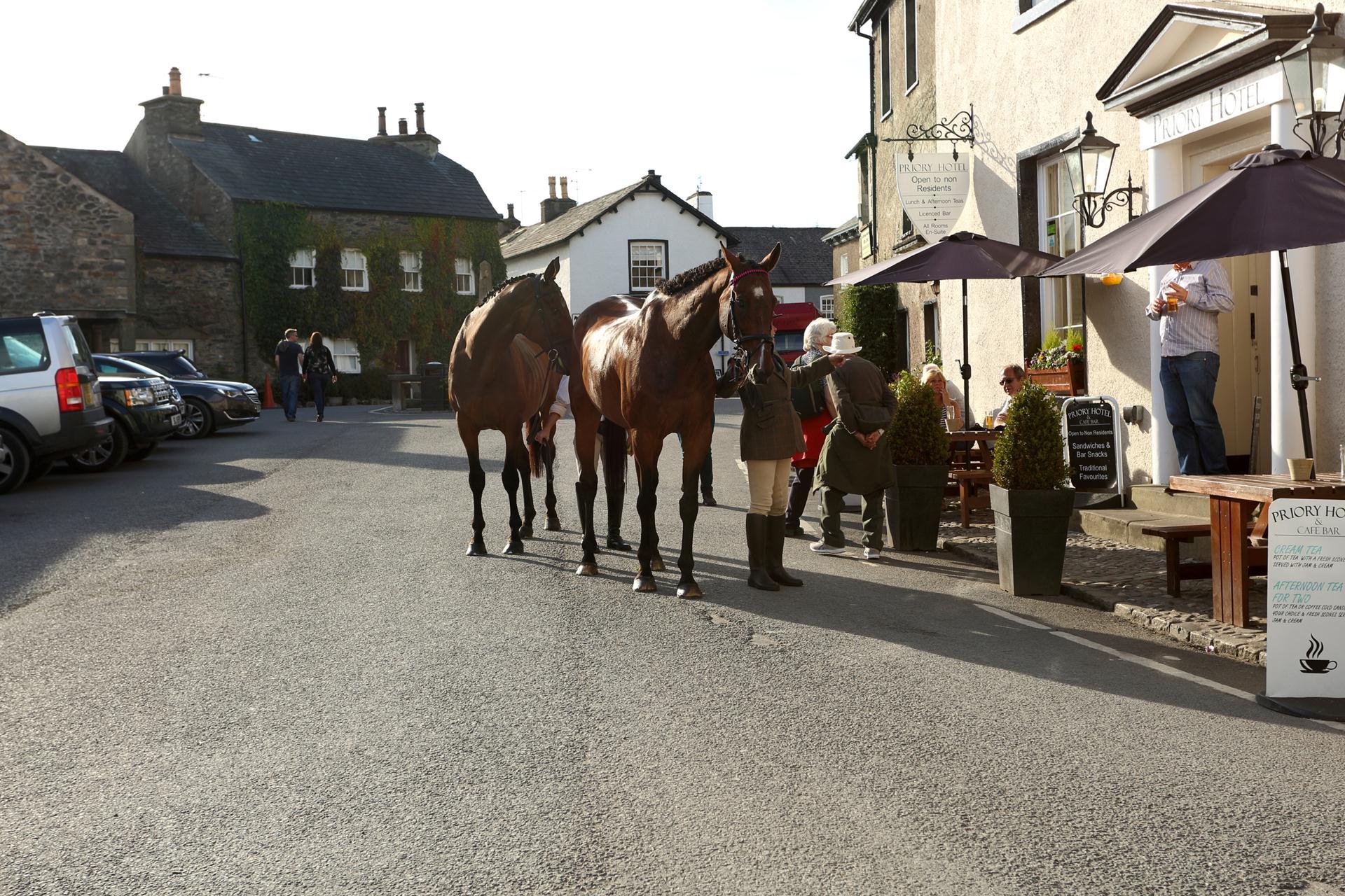 Cartmel square Horses
