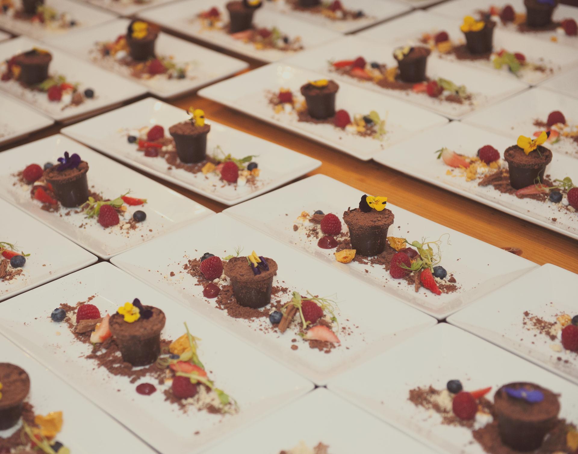 chocolate plant pot desserts