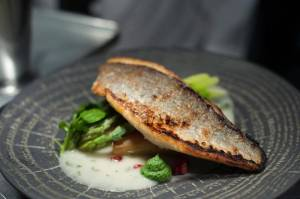 Fish dish served at Blackpool Fylde College